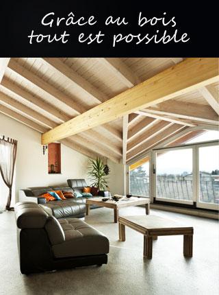Maison bois Reims 1